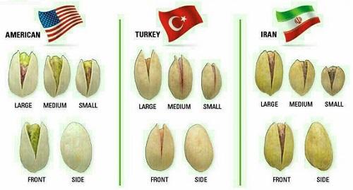 پسته ایران ترکیه آمریکا
