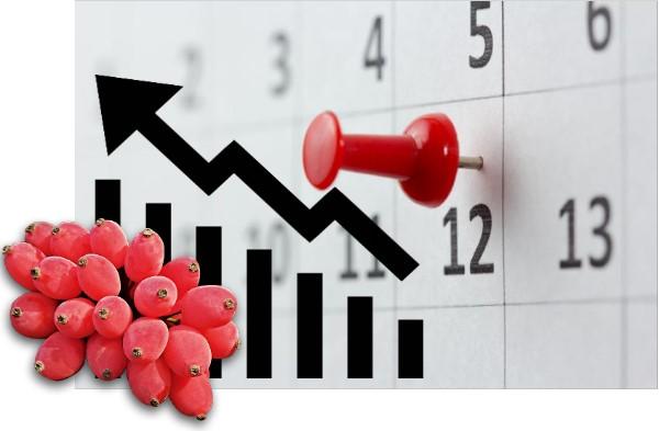 افزایش قیمت زرشک