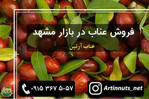 قیمت خرید عناب