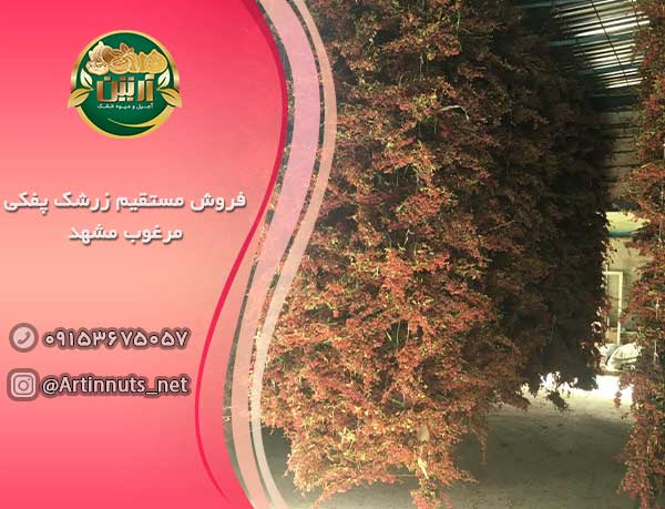 فروش مستقیم زرشک پفکی مرغوب مشهد