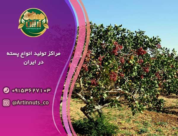 مراکز تولید انواع پسته در ایران