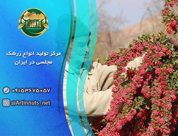مرکز تولید انواع زرشک مجلسی در ایران