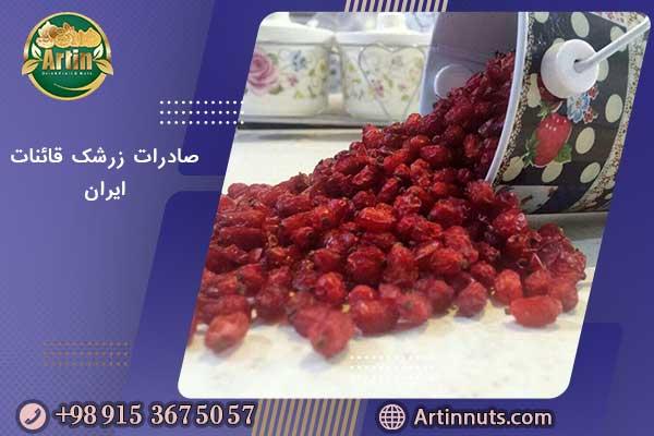 صادرات زرشک قائنات ایران