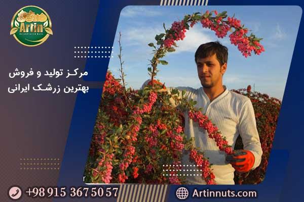 مرکز تولید و فروش بهترین زرشک ایرانی