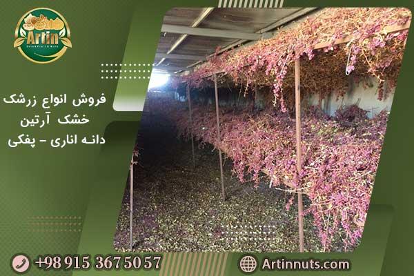 فروش انواع زرشک خشک آرتین - دانه اناری - پفکی