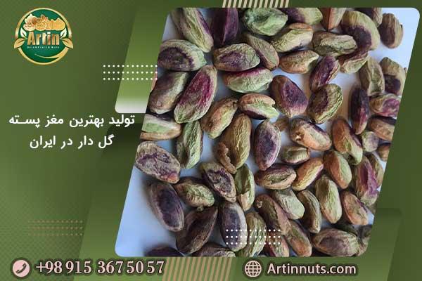 تولید بهترین مغز پسته گل دار در ایران