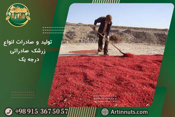 تولید و صادرات انواع زرشک صادراتی درجه یک