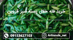 خرید فله خلال پسته سبز قزوین