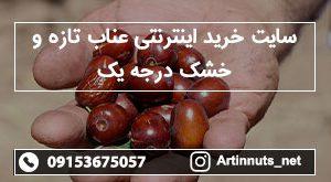 سایت خرید اینترنتی عناب تازه و خشک درجه یک