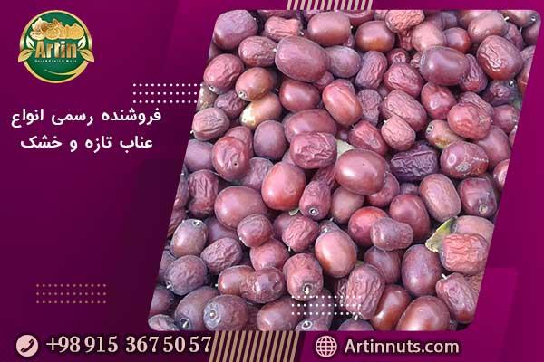 فروشنده رسمی انواع عناب تازه و خشک