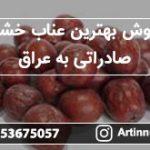 فروش بهترین عناب خشک صادراتی به عراق