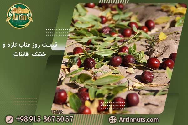 قیمت روز عناب تازه و خشک قائنات