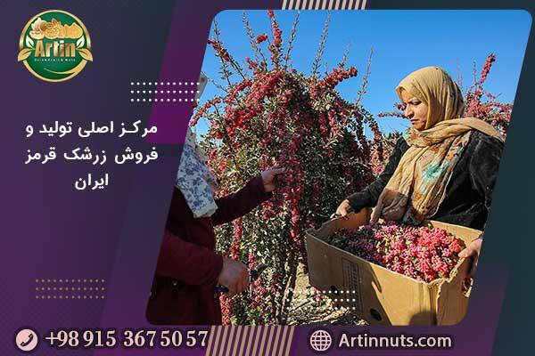 مرکز اصلی تولید و فروش زرشک قرمز ایران