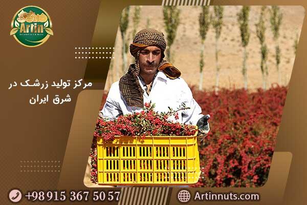 مرکز تولید زرشک در شرق ایران