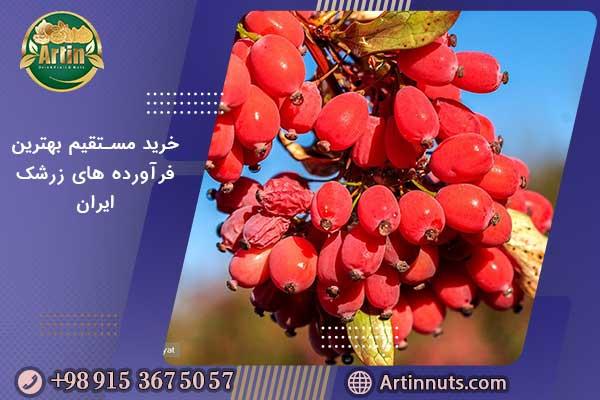 خرید مستقیم بهترین فرآورده های زرشک ایران