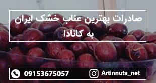 صادرات بهترین عناب خشک ایران به کانادا