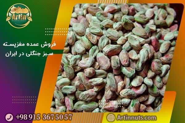 فروش عمده مغزپسته سبز جنگلی در ایران