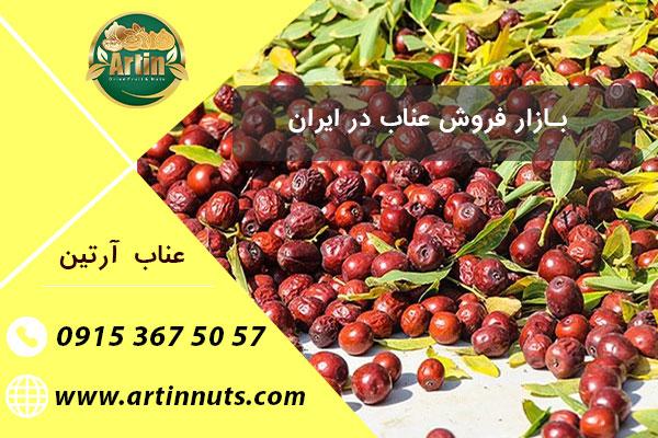بازار فروش عناب در ایران