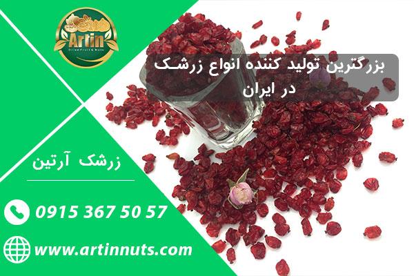 بزرگترین تولید کننده انواع زرشک در ایران