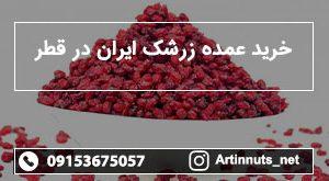 خرید عمده زرشک ایران در قطر