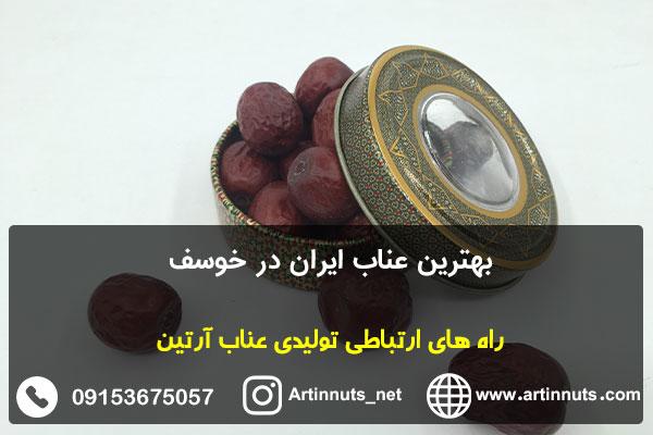 بهترین عناب ایران در خوسف