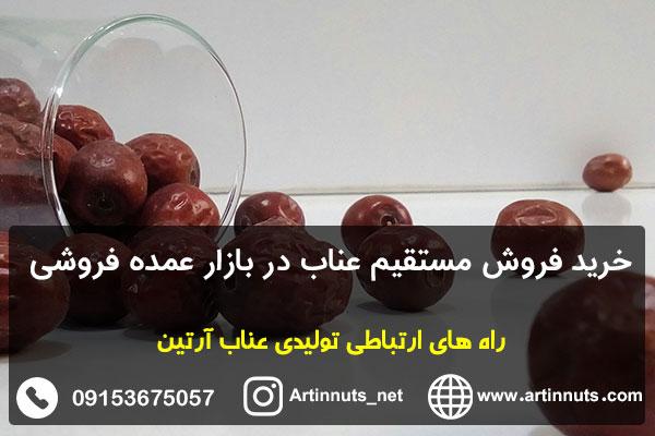 خرید فروش مستقیم عناب در بازار عمده فروشی