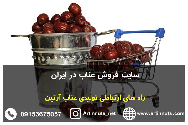 سایت فروش عناب در ایران