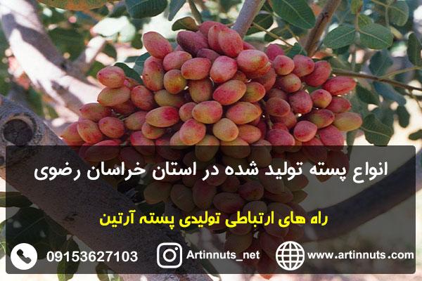 انواع پسته تولید شده در استان خراسان رضوی