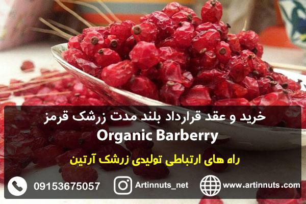 خرید و عقد قرارداد بلند مدت زرشک قرمز Organic Barberry
