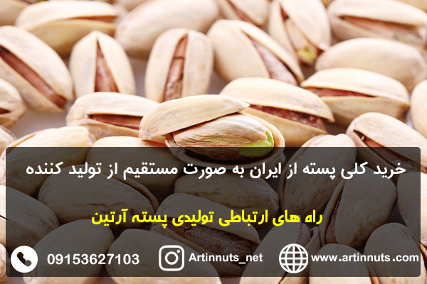خرید کلی پسته از ایران به صورت مستقیم از تولید کننده