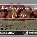 فروش عناب بیرجند به قیمت درب باغ