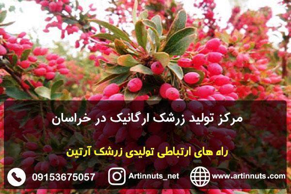 مرکز تولید زرشک ارگانیک در خراسان
