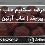مرکز عرضه مستقیم عناب درشت بیرجند | عناب آرتین