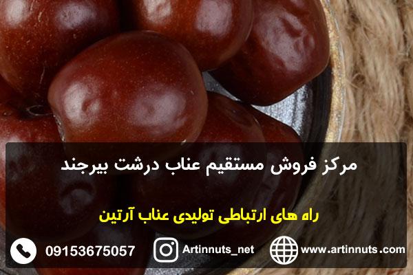 مرکز فروش مستقیم عناب درشت بیرجند