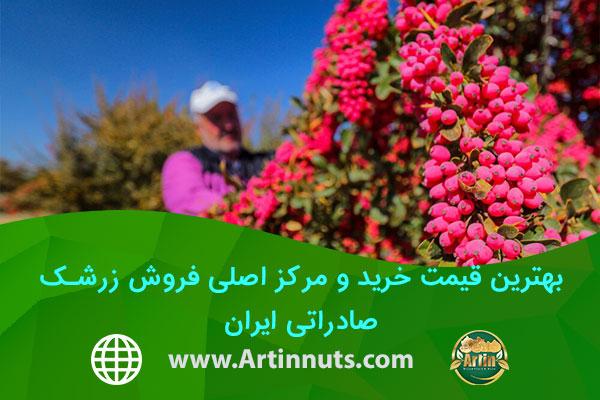 بهترین قیمت خرید و مرکز اصلی فروش زرشک صادراتی ایران