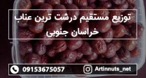 توزیع مستقیم درشت ترین عناب خراسان جنوبی