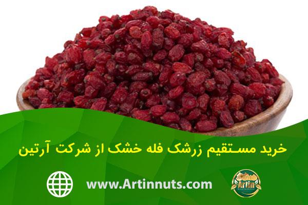 خرید مستقیم زرشک فله خشک از شرکت آرتین