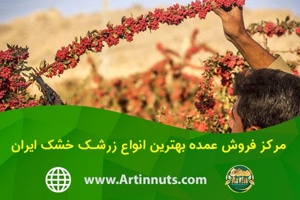 مرکز فروش عمده بهترین انواع زرشک خشک ایران