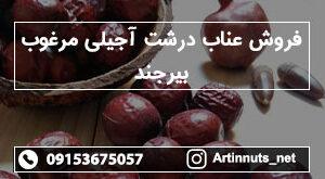 فروش عناب درشت آجیلی مرغوب بیرجند