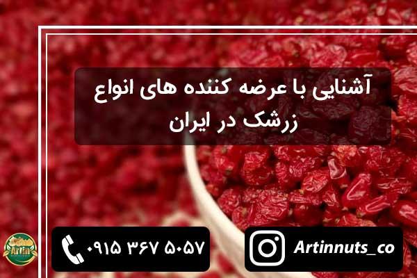 آشنایی با عرضه کننده های انواع زرشک در ایران