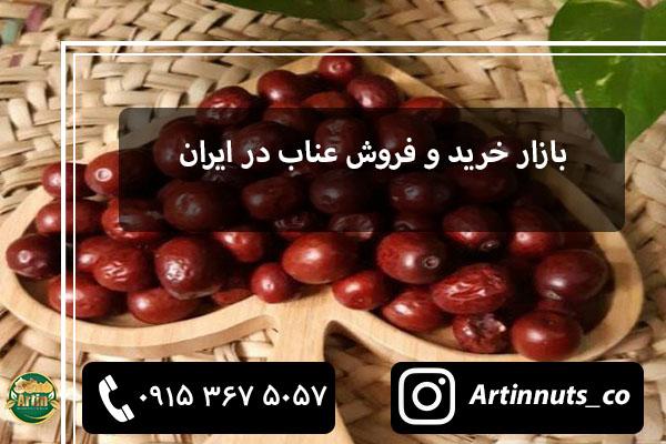 بازار خرید و فروش عناب در ایران