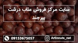 سایت مرکز فروش عناب درشت بیرجند