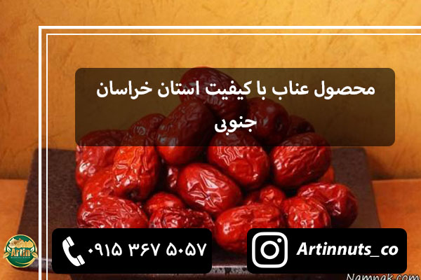 محصول عناب با کیفیت استان خراسان جنوبی