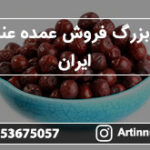 مرکز بزرگ فروش عمده عناب در ایران